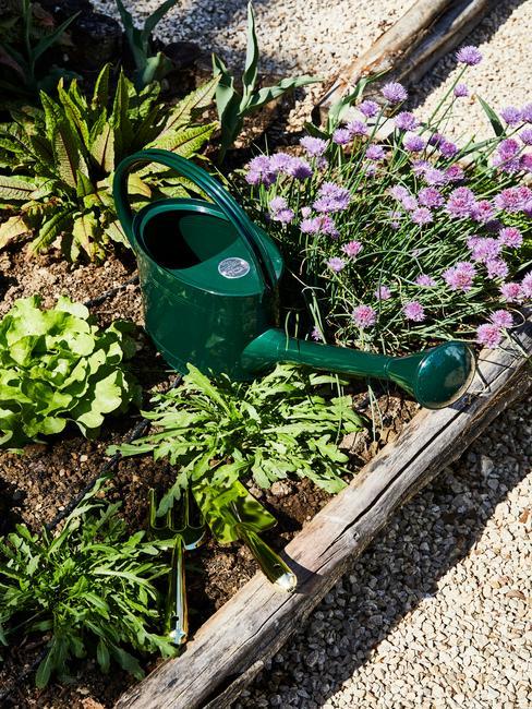 Sadenie v záhrade