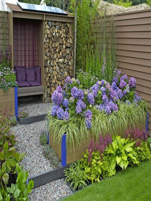 Okrasné trávy - fialové kvety
