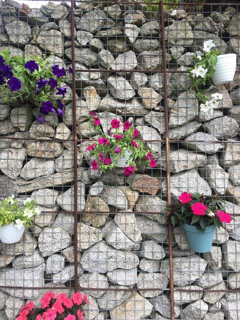 Vertikálna záhrada na kamennej stene