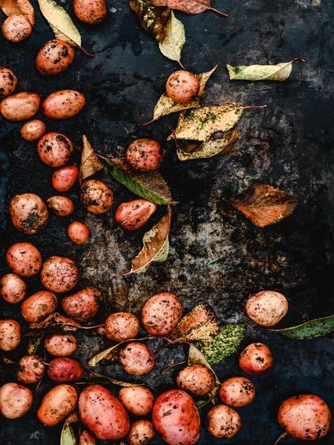 upečené zemiaky