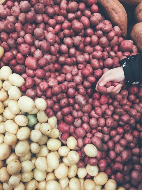 Sadenie zemiakov nie je veda