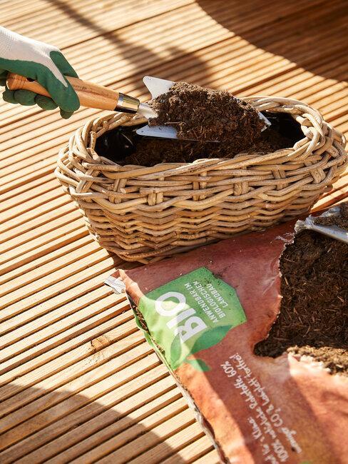 sadenie a údržba