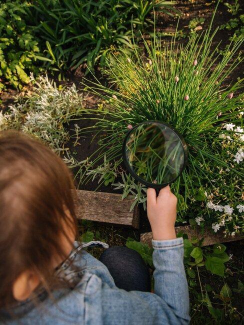 Dieťa skúma burinu a kvety