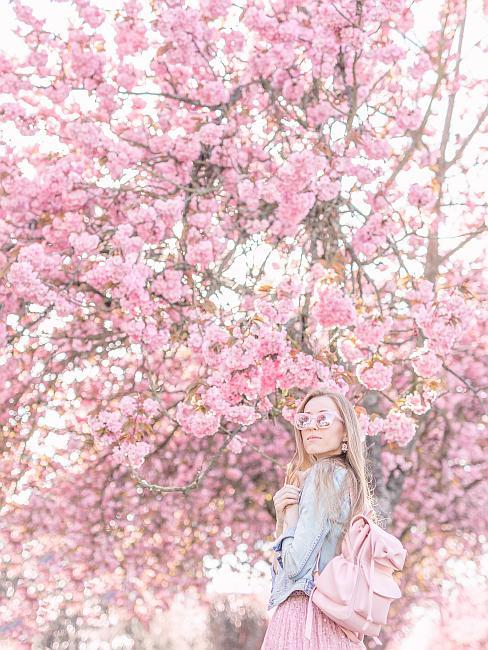 Rozkvitnutý strom s ružovými kvetmi