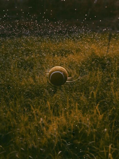 Postrekovač trávy