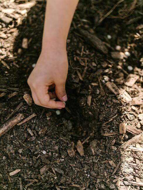 Zisťovanie pH pôdy