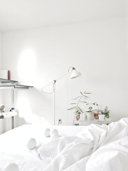 Biela farba v interiéri