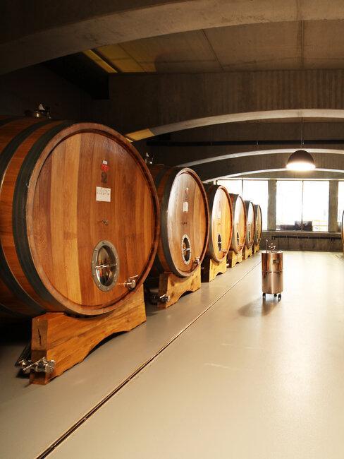 Elesko: vínna pivnica so sudmi