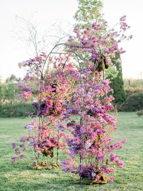 Jarabina: kvetinová slavobrána