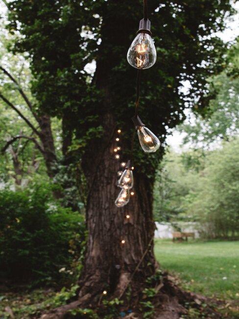 Svadobná svetelná výzdoba v záhrade