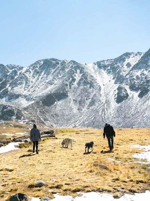 pes a hory