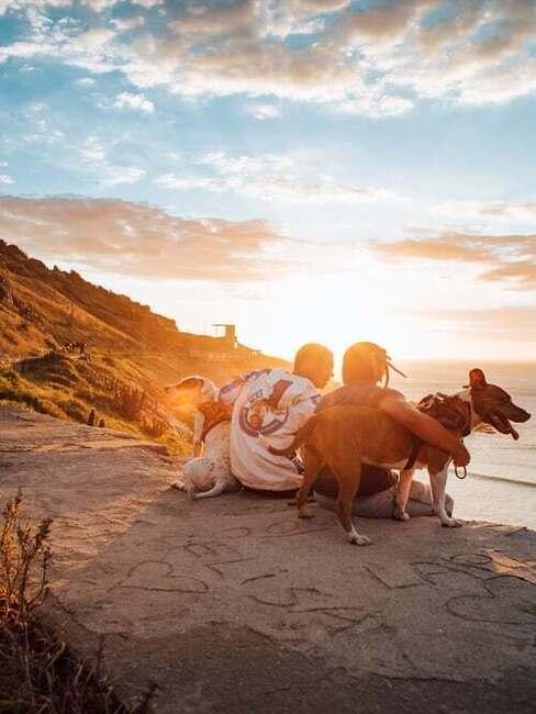 romantika so psom