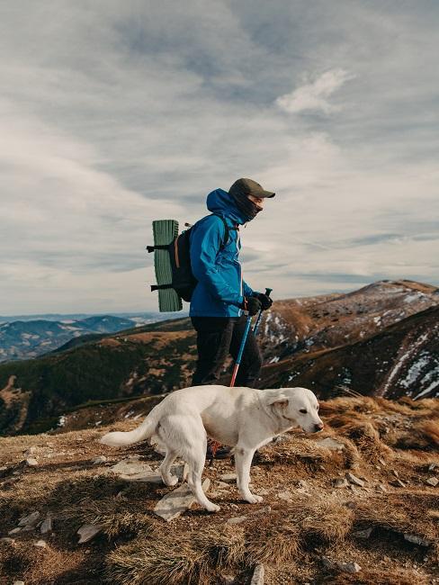 Turista so psom na horách