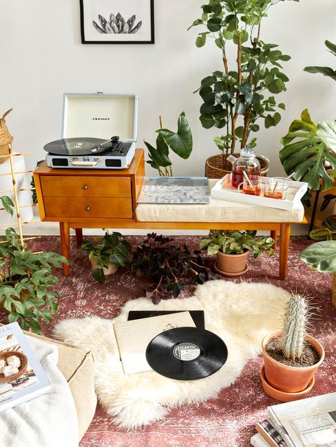Oáza zelene v obývačke s gramofónom