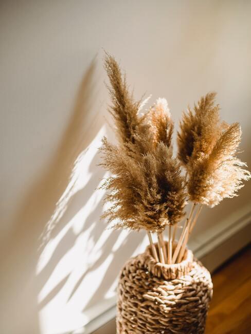 Aranžovanie kvetov: pampová tráva