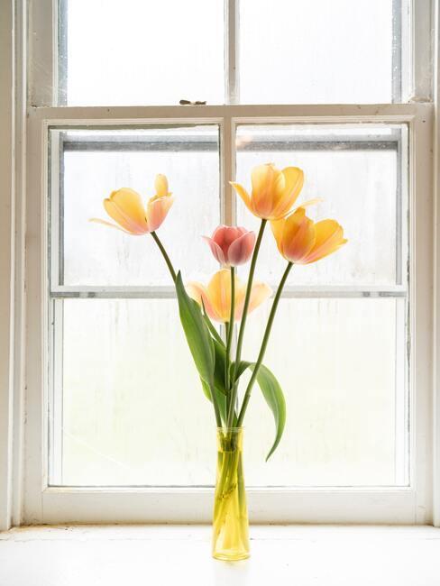 Žlté tulipány vo váze