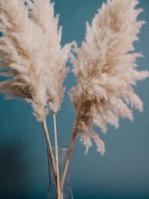 Sušené trávy pre boho štýl