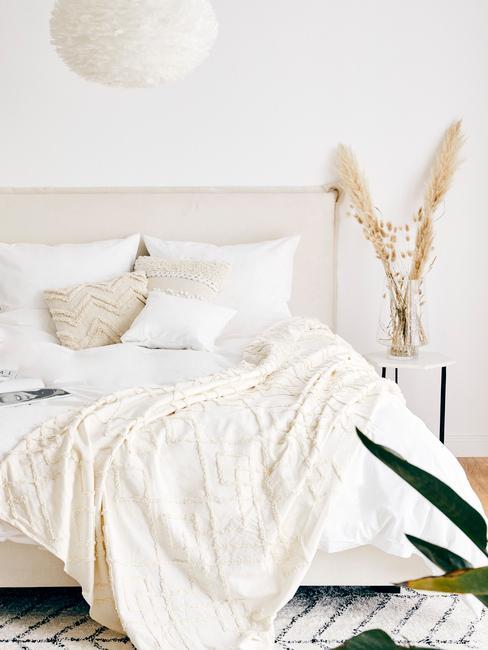 Pampová tráva v spálni