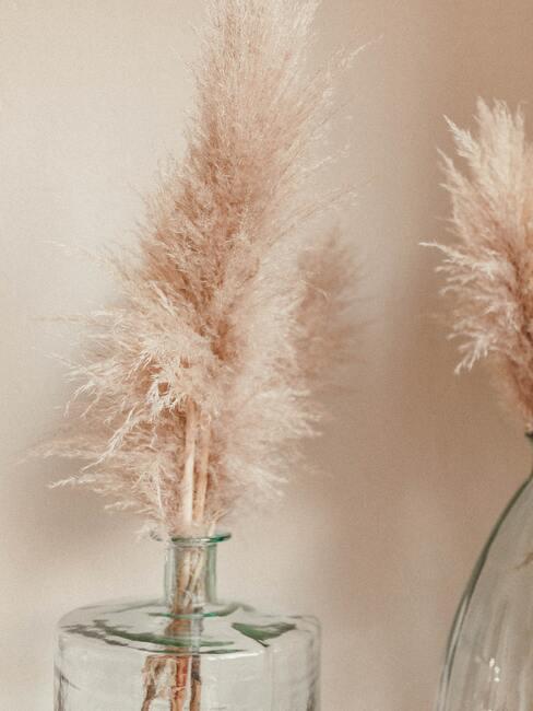 Pampová tráva ako dekorácia