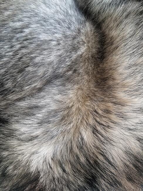 Sivá umelá kožušina