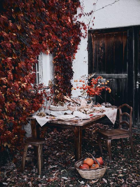 Jesenné dekorácie: listy