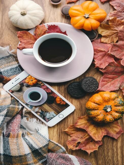 Jesenné dekorácie: listy a tekvice