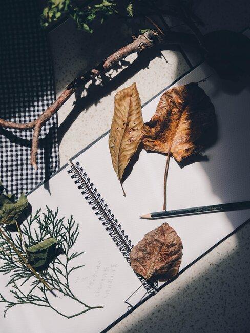 tvorba jesennej dekorácie z papiera