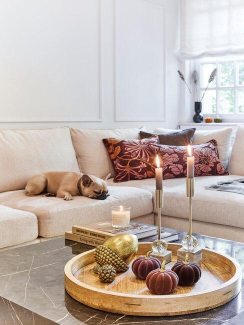 šišky ako jesenná dekorácia v obývačke
