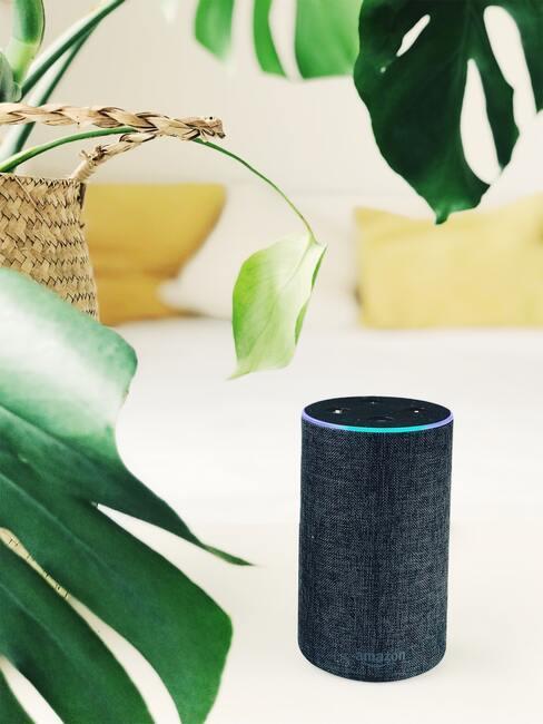 Inteligentná domácnosť: virtuálny asistent