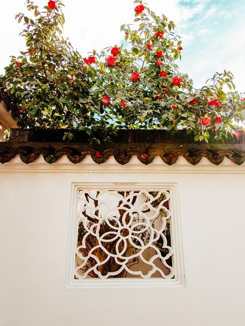 Strešná záhrada s červenými kvetmi