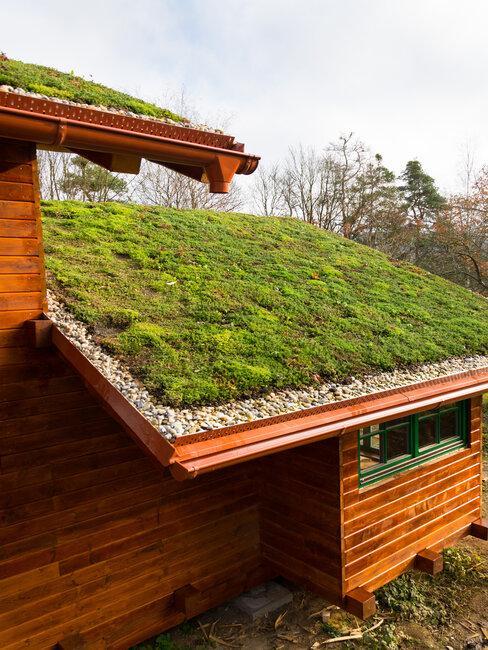 zelená strecha na drevenom dome