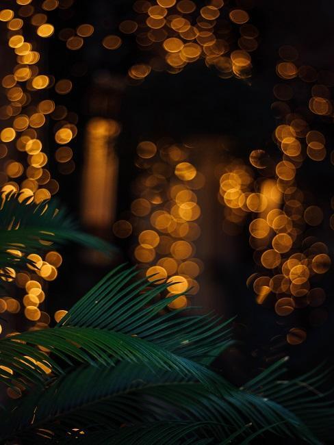 Vianočné vetvičky