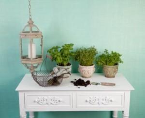 Mesa de siembra
