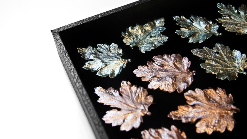 Broches de plata