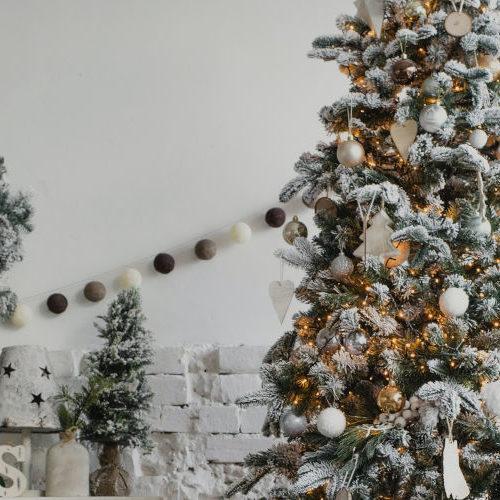 Alberi di Natale innevati