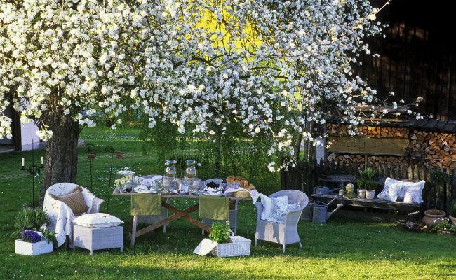 Wypoczynek w ogrodzie pod drzewami