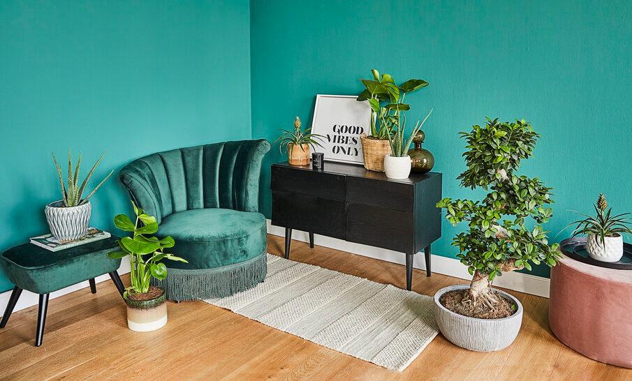 zielony fotel czarna komoda