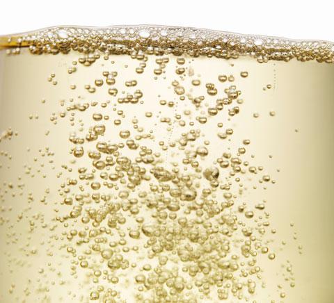 Alles über Champagner