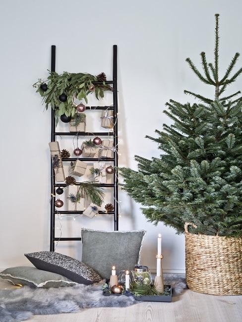 Ast dekorieren Weihnachten mit Kugeln und Lichterkette auf Deko-Leiter neben Christbaum