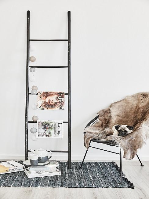 Deko Leiter mit Magazinen und einer Lichterkette auf einem Teppich, daneben ein Lounge Chait mit Fell, auf dem ein Hund liegt
