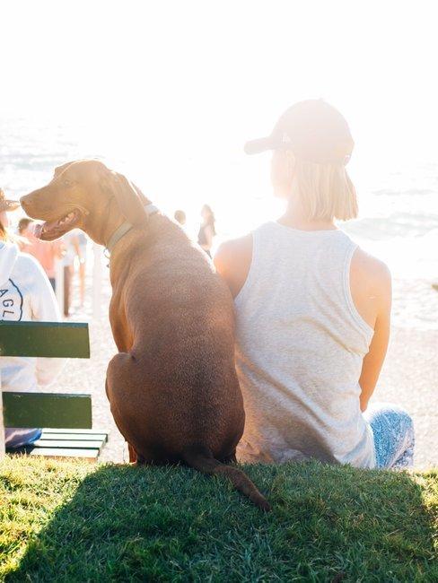 Van achter gefotografeerd hond naast baasje met uitzicht op het strand