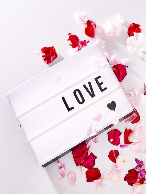 """Leuchtbox mit """"LOVE"""" Schrift und einem Herz auf dem Boden neben romantischen Rosenblättern"""