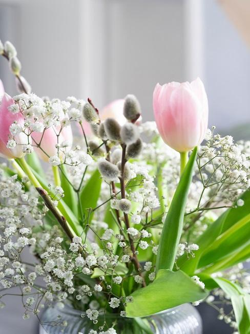 Schleierkraut mit Tulpen und Weidenkätzchen in Glasvase