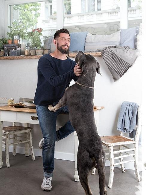 Marcel Graf Wohnung Hund Tisch Stühle