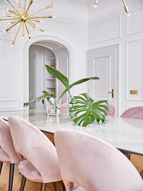 Comedor con sillas rosas y plantas monsteras