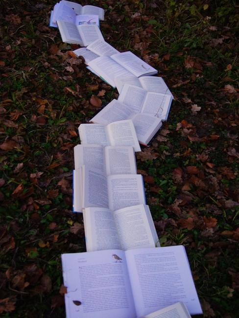 Libros abiertos puestos uno junto a otro para formar un camino sobre un jardín con hojas
