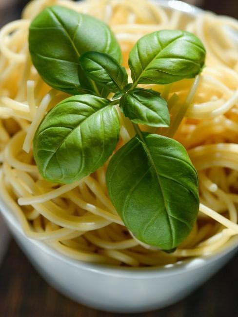 albahaca con espaguetis