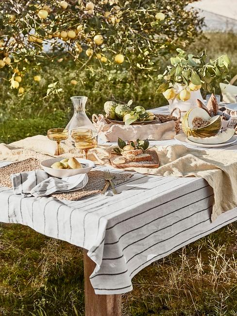 Gedekte tafel in de tuin naast een citroenboom