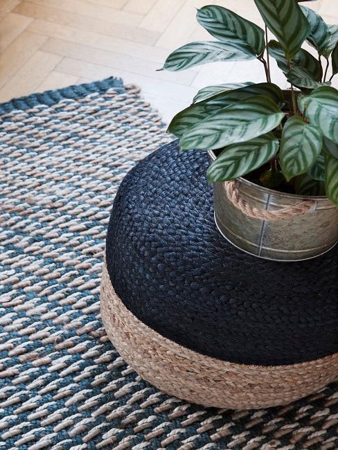 Blauer Teppich, darauf ein Pouf mit Pflanzentopf