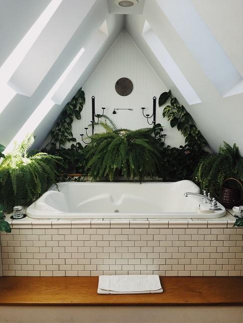 Eine große Badewanne umgeben von vielen grünen Pflanzen.